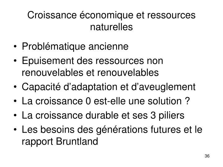 Croissance économique et ressources naturelles