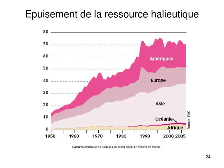 Epuisement de la ressource halieutique