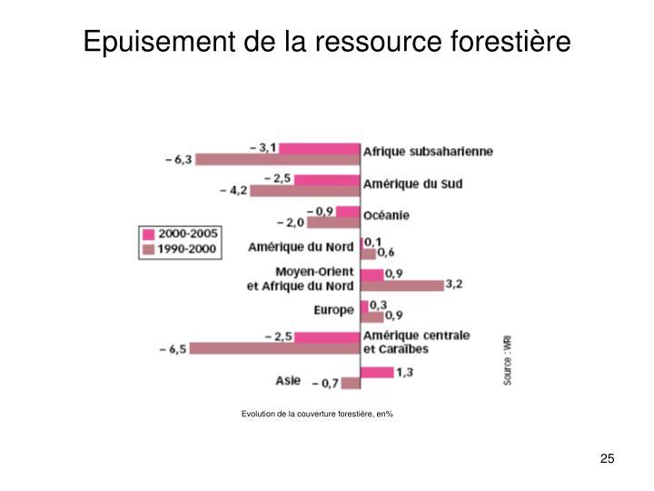 Epuisement de la ressource forestière