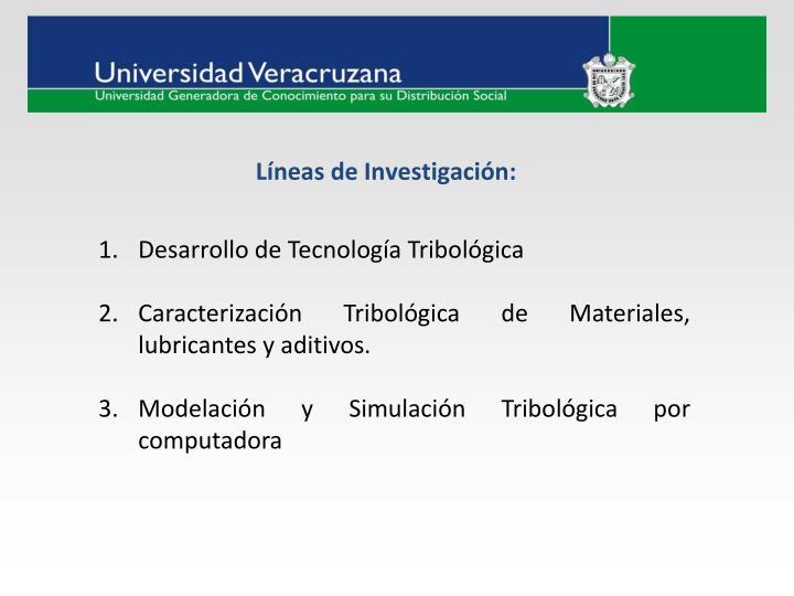 Líneas de Investigación: