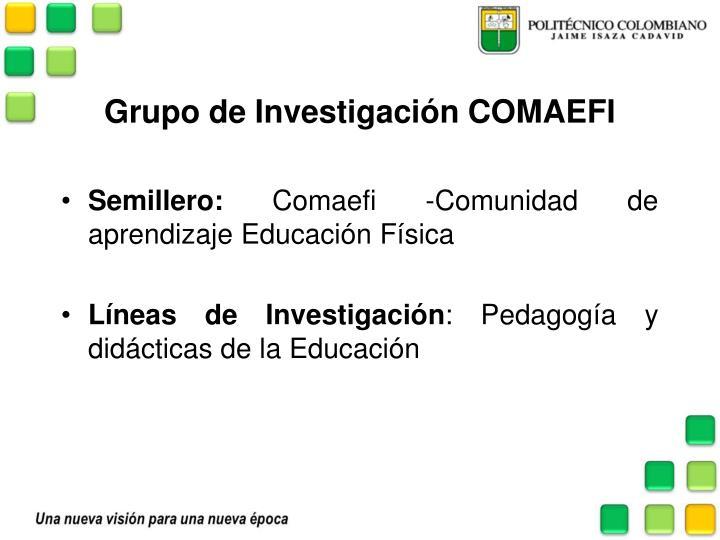 Grupo de Investigación COMAEFI