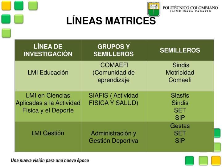LÍNEAS MATRICES
