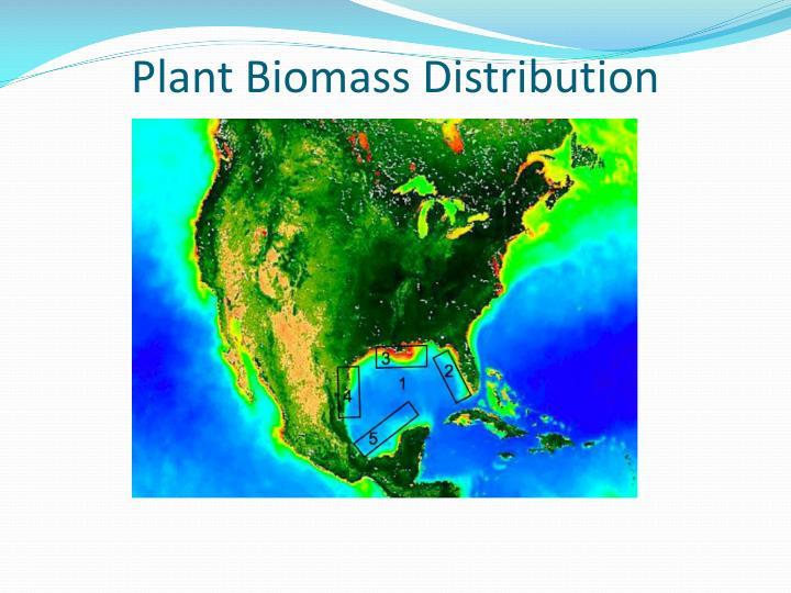 Plant Biomass Distribution