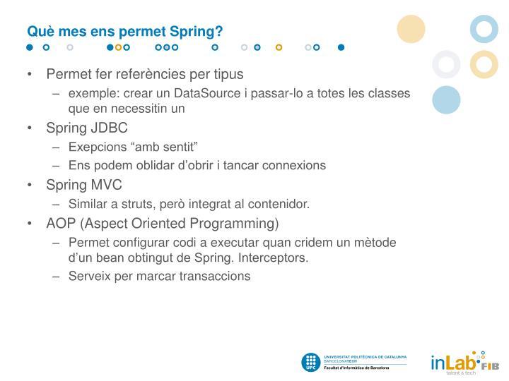 Què mes ens permet Spring?