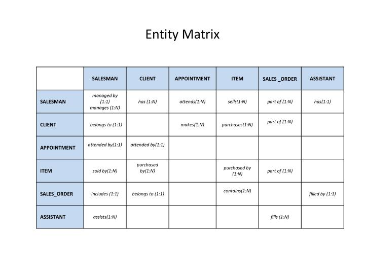 Entity Matrix