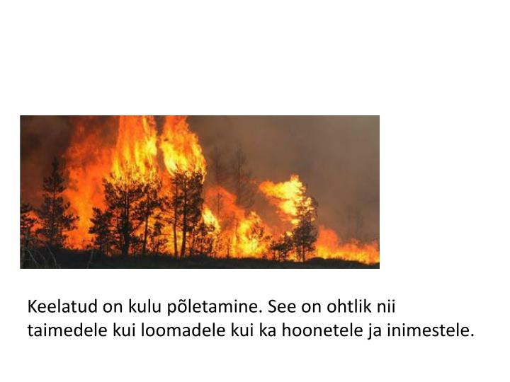 Keelatud on kulu põletamine. See on ohtlik nii taimedele kui loomadele kui ka hoonetele ja inimestele.
