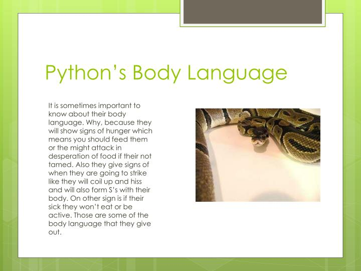 Python's Body Language