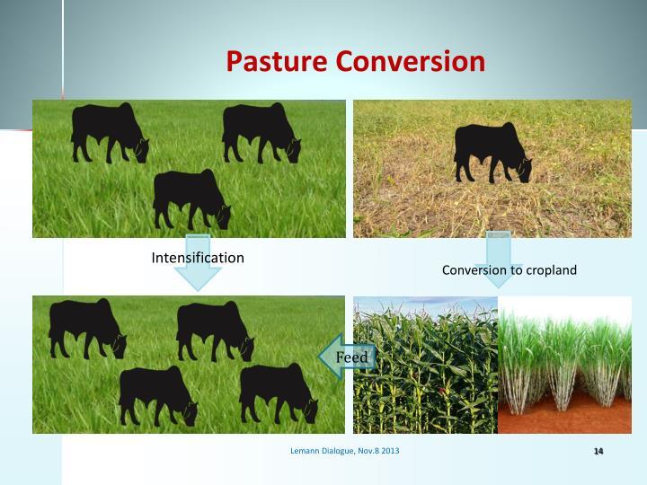 Pasture Conversion
