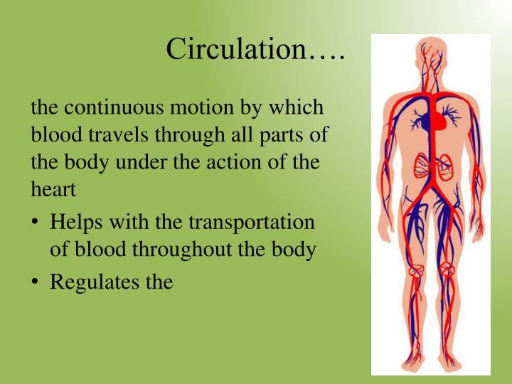 Circulation….