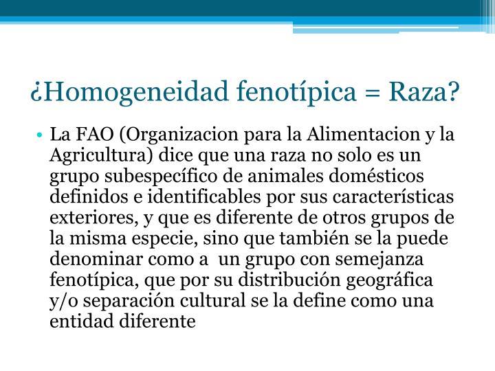 ¿Homogeneidad fenotípica = Raza?