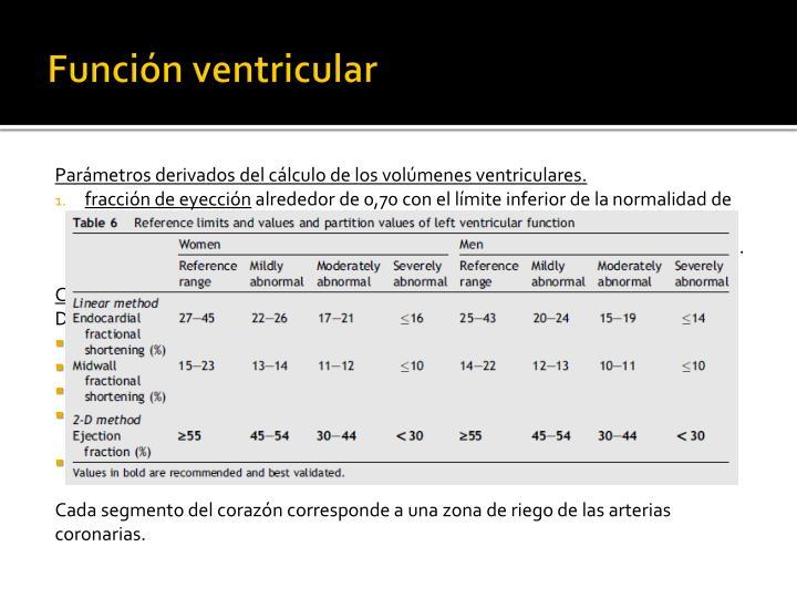 Función ventricular