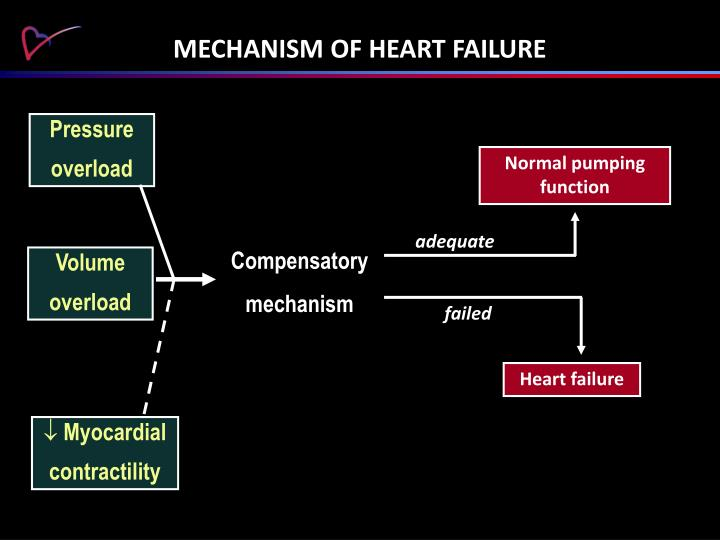 MECHANISM OF HEART FAILURE