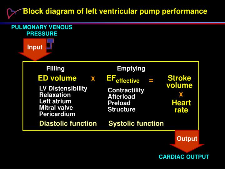 Block diagram of left ventricular pump performance