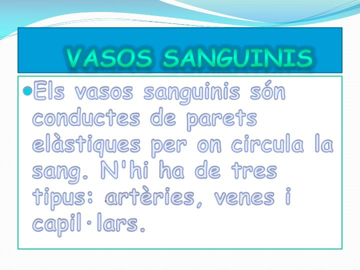 VASOS SANGUINIS