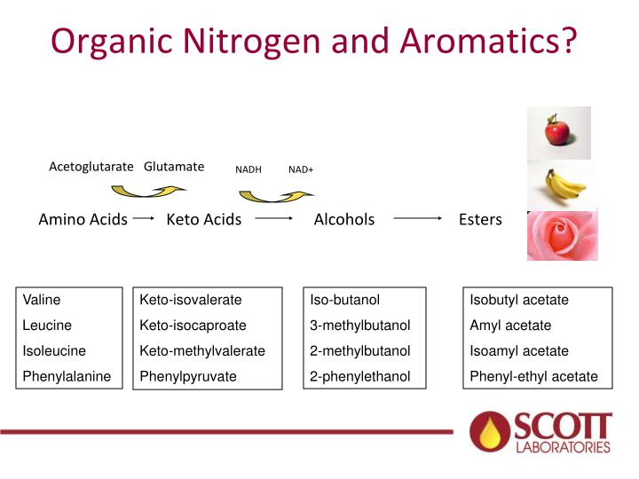 Organic Nitrogen and Aromatics?
