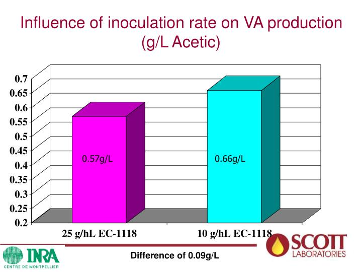 Influence of inoculation rate on VA production