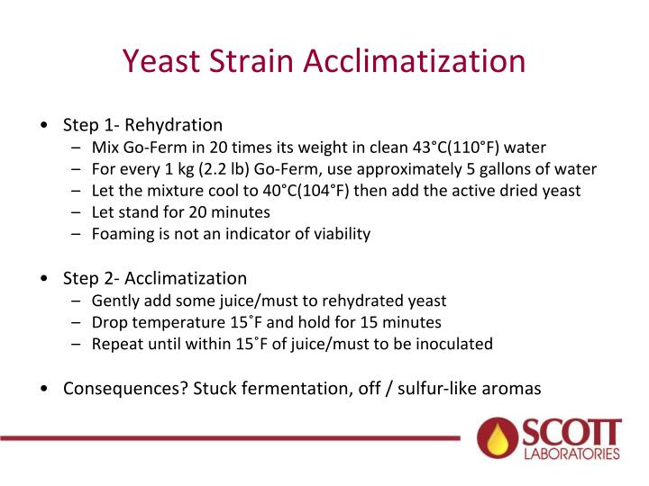 Yeast Strain Acclimatization