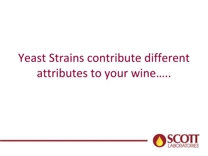 Yeast Strains contribute different attributes to your wine…..