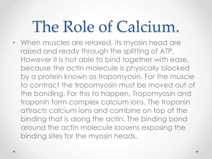 The Role of Calcium.
