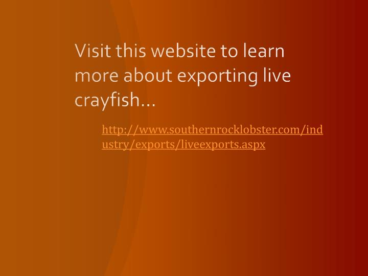 Visit this website to learn more about exporting live crayfish...