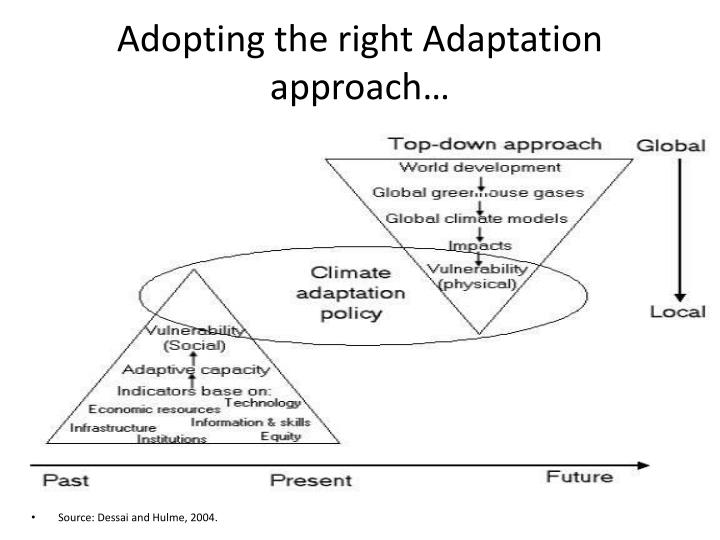 Adopting the right Adaptation approach…