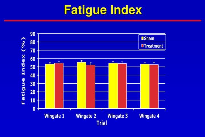 Fatigue Index