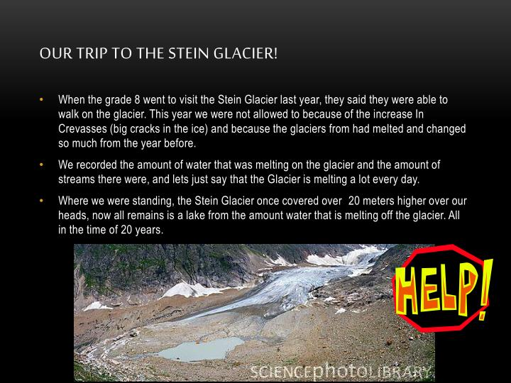 Our trip to the Stein Glacier!