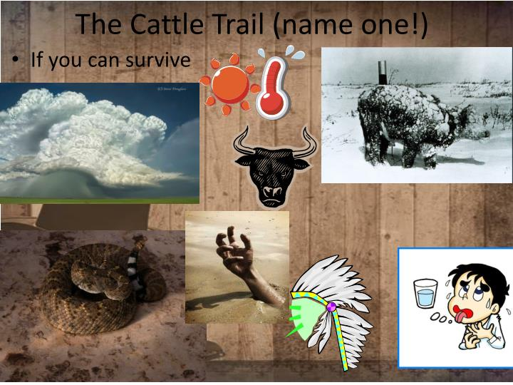The Cattle Trail (name one!)