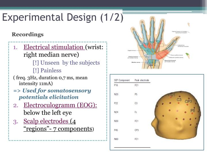 Experimental Design (1/2)