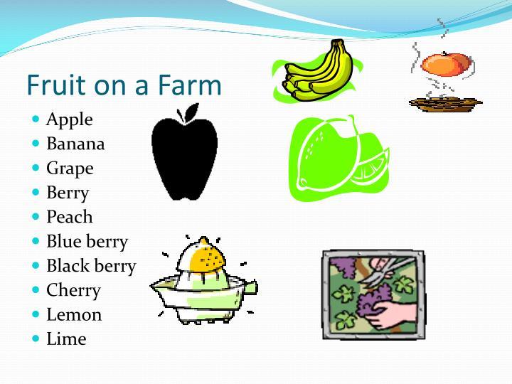 Fruit on a Farm