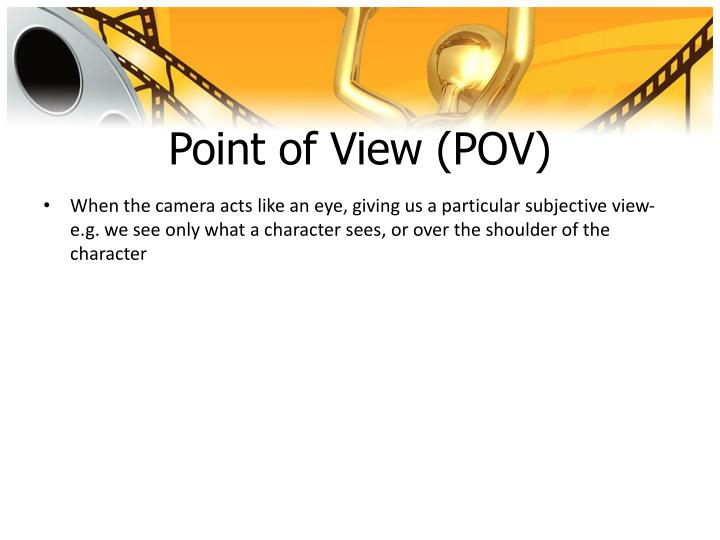 Point of View (POV)