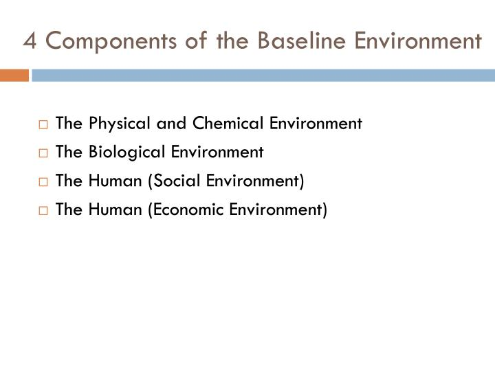 4 Components of the Baseline Environment