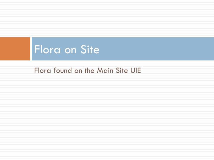 Flora on Site