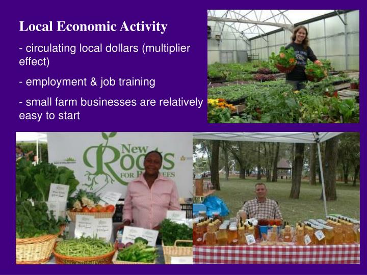 Local Economic Activity