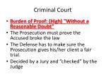 criminal court2