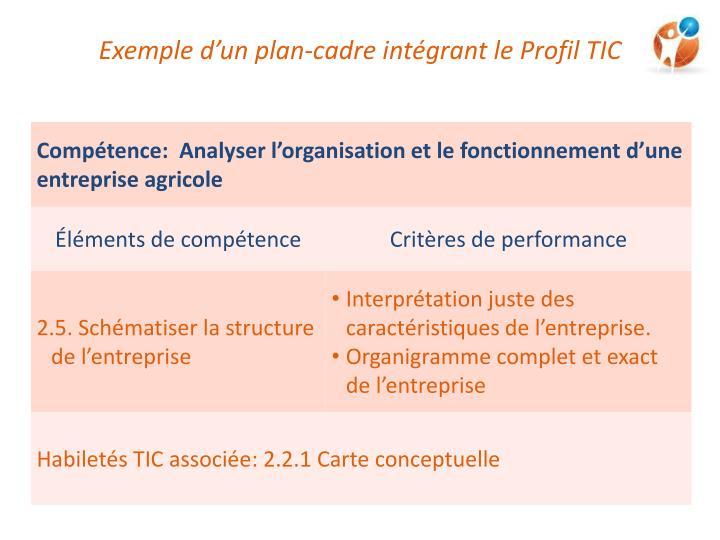 Exemple d'un plan-cadre intégrant le Profil TIC