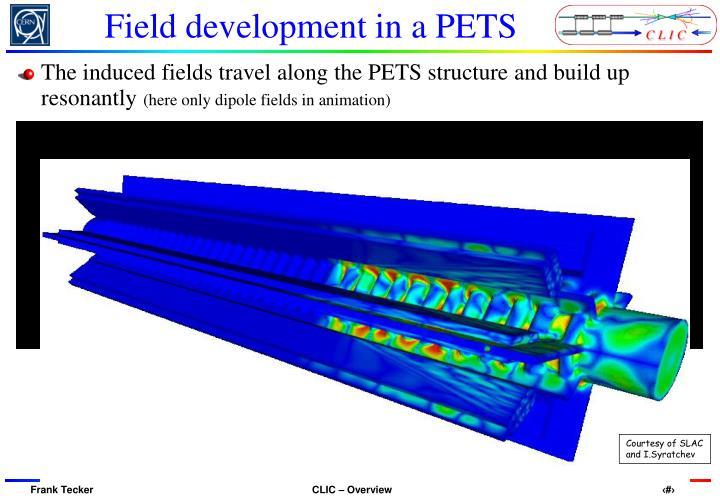Field development in a PETS