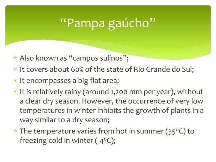 """Pampa gaúcho"""