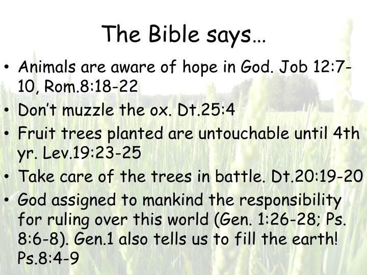 The Bible says…