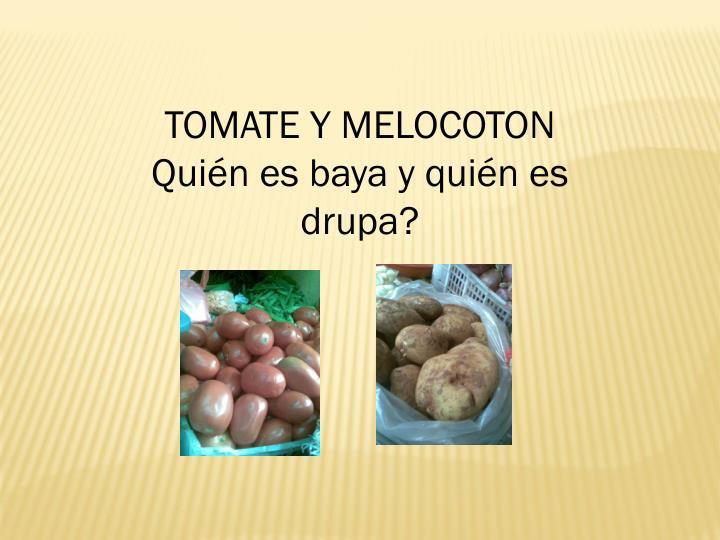 TOMATE Y MELOCOTON