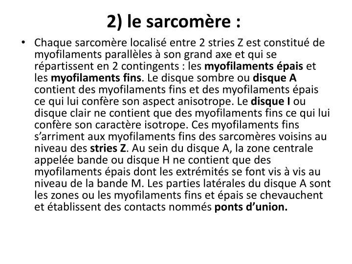 2) le sarcomère: