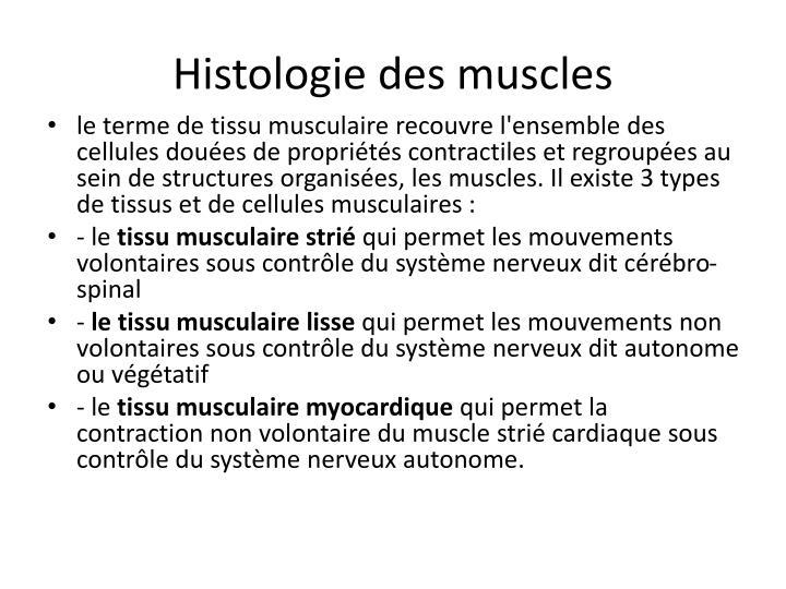 Histologie des muscles