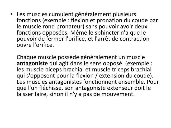 Les muscles cumulent généralement plusieurs fonctions (exemple : flexion et pronation du coude par le muscle rond pronateur) sans pouvoir avoir deux fonctions opposées. Même le sphincter n'a que le pouvoir de fermer l'orifice, et l'arrêt de contraction ouvre l'orifice.