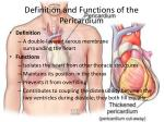 definition and functions of the pericardium