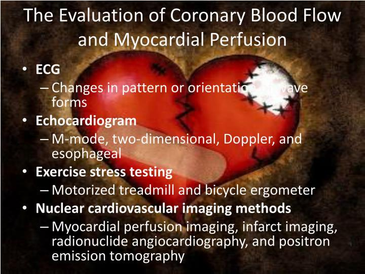 The Evaluation of Coronary Blood Flow and Myocardial Perfusion