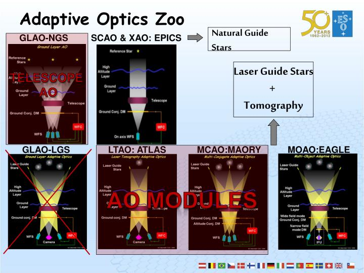 Adaptive Optics Zoo