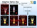 adaptive optics zoo