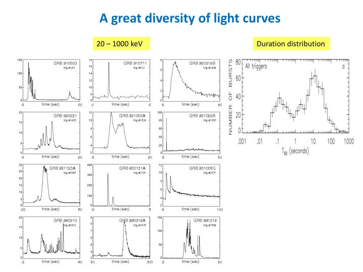 A great diversity of light curves