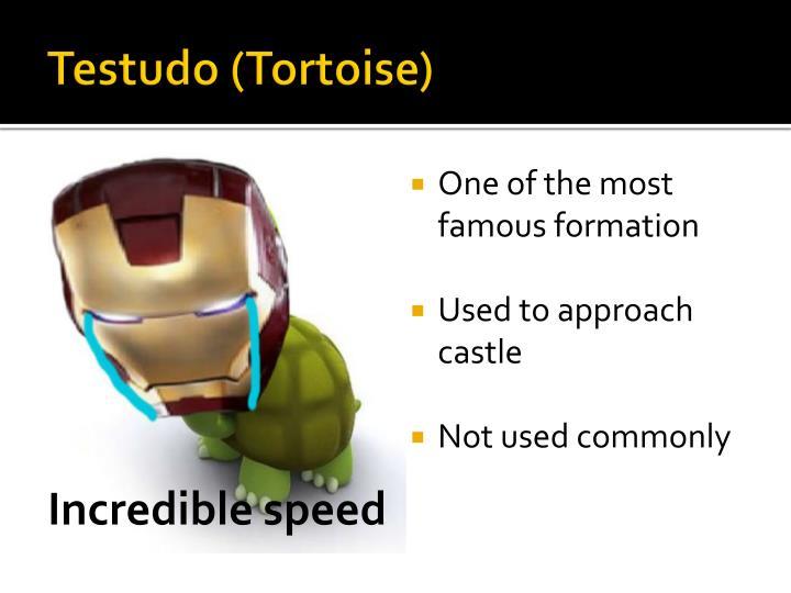 Testudo (Tortoise)
