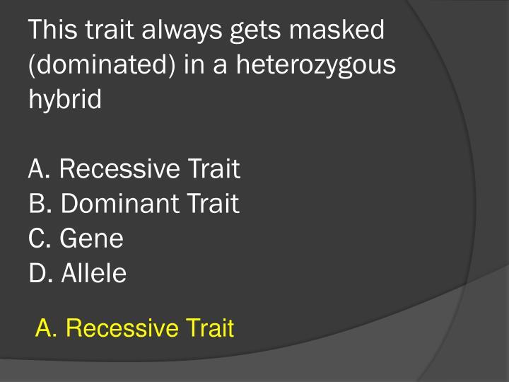 This trait always gets masked (dominated) in a heterozygous hybrid